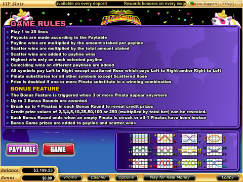 video slots rules